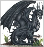 black dragon by lilzoey17