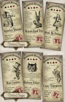 Printable Alice in Wonderland Inventory Labels by VectoriaDesigns