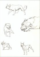 Dog Page by nikkiburr