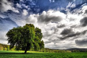 The Czech countryside by tomsumartin