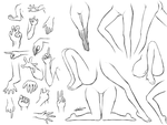 Poses of Arms n Legs by wangqr