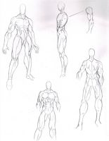 MANGA MALE BODY STRUCTURE by tiffawolf