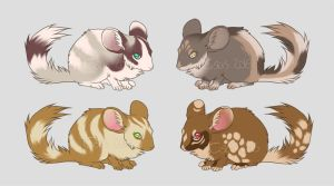 Chinchilla adoptables! Open by t1sk1jukka