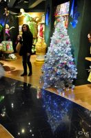 Christmas tree reflection by vinc-photography