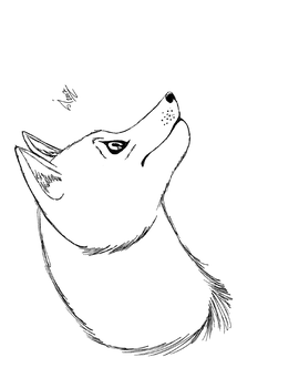 Wofl Practise - Profile by janewillow1
