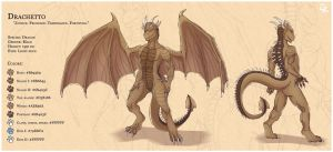 Commission for Drachetto by HasegawaVega