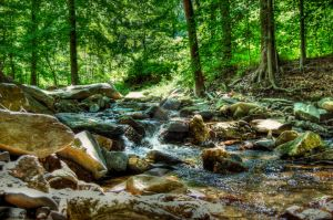 Gunpowder falls by Schwingding