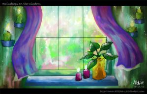 Raindrops on the window by Allisha-V