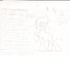 Pony Anatomy Study - Female by KingdomHeartsfreak82