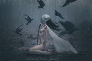 Where The Black Birds Sing by TheComtesse