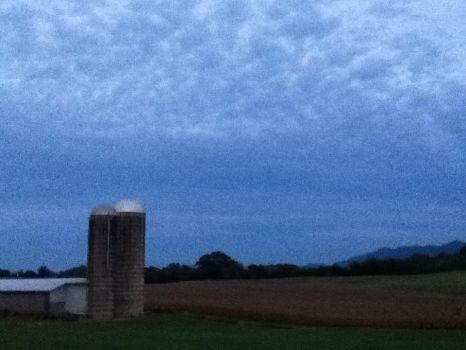 Silo by GibsonGuitarist