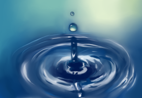 Water Study by Rootienut