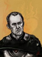 Ice and Fire - Stannis by yakuzafish