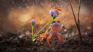 Gecko and insect on rainy day by BalochDesign