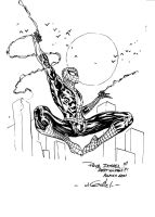 Spider-Man - Allauch 2011 by SpiderGuile