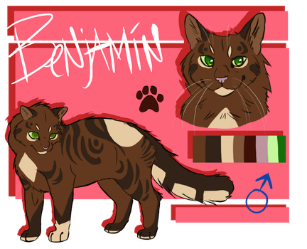 Benjamin Reference Sheet by ClimbToTheStars