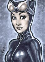 Catwoman by BigChrisGallery