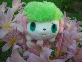 Shaymin amongst the flowers by superphail