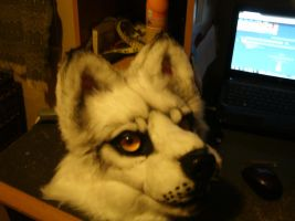 wip mask comm. by Rookshock