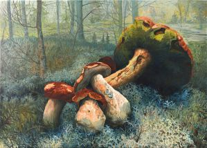 Mushrooms by the river by AldemButcher