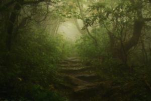 Craggy Path by ncphotojunkie