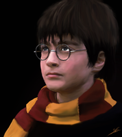 Harry Potter - Year 1 by ArchXAngel20