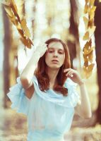 gold butterfly by Anna1Anna
