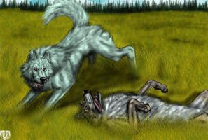 Andrea and Kahlan Playing by VorpalBeast