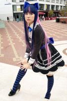 Stocking by sonialeong