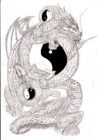 ying yang dragons by Dukesketches