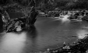 Flowing BW by Blister17