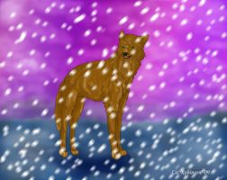 Roh-Snow fall by TheForgottenWolf