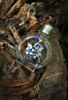 small story of one bottle 3 by saricia