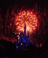 Cinderellas Castle at Night:16 by CanisCamera