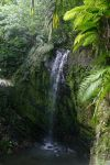 El Yunque Waterfall by THEsimplePLEASURES