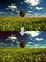 Photoshop Action 16 by w1zzy-resources