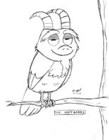 Cross an owl with a billy goat by Cartoon-Eric