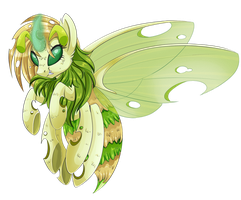 Bee Changeling Female by chris9801