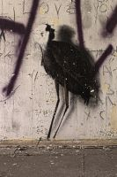 13-06 Graffiti Bird by evionn