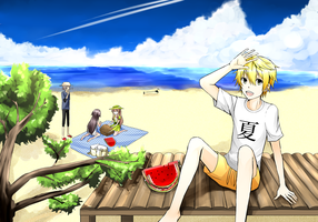 [Contest Entry] Pandora Hearts Summer by palmtreehero