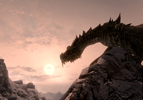 Paarthurnax by MotPArt