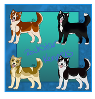Siberian Husky Imports Closed by WinchesterCrossroads