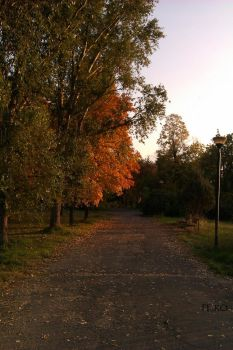 A walk in the park 5 by PeroS