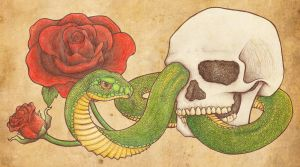 Snake and Skull Tattoo by DablurArt