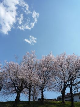 Beautiful Cleared sky of Japan : ) by Kanivah