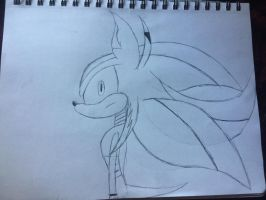 Dismal the Hedgehog by rayquaza2828