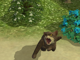 OMG - The Sims 2 Pets by Kali-caracal