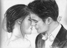 Mr and Mrs Cullen by Allie06