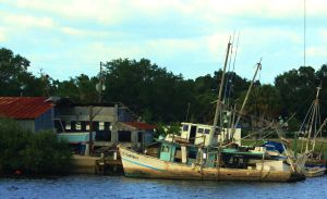 Tarpon Boats by WatchTower513