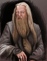 Dumbledore by hexacosm